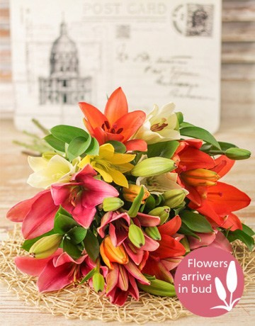 Mixed Lily Bouquet in Durban