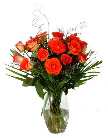 Orange Roses in a Vase in Durban