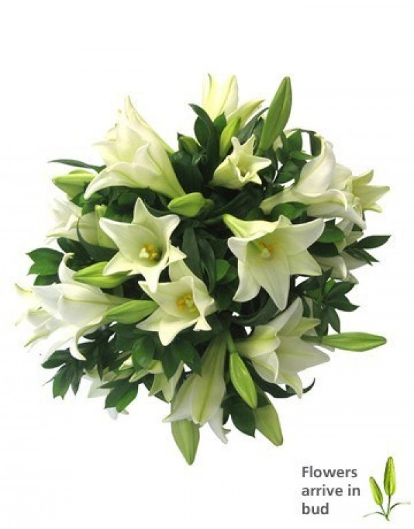 Flower Girl Baskets Durban : Bouquet of white lilies in durban south africa