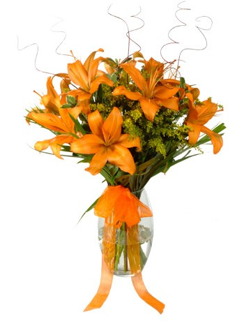Orange Lilies in a Vase to Durban