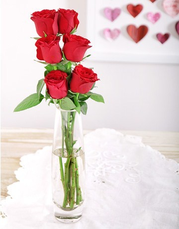 6 Red Roses in a Vase for Valentine's Day